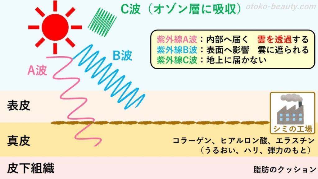 紫外線A波、B波、C波
